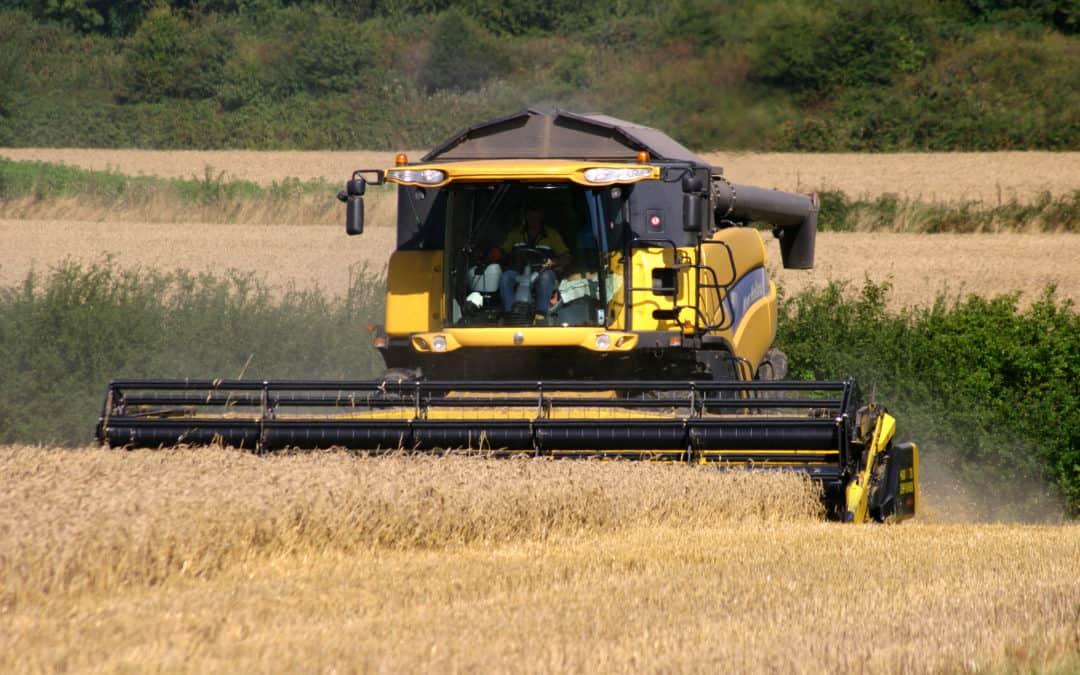 Cosechadoras de maíz: tipos y principales usos