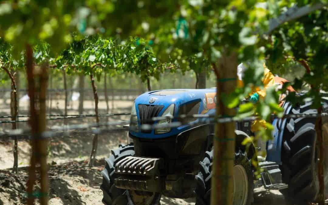 ¿Qué tipos de tractores tenemos para el mercado de agroexportación?